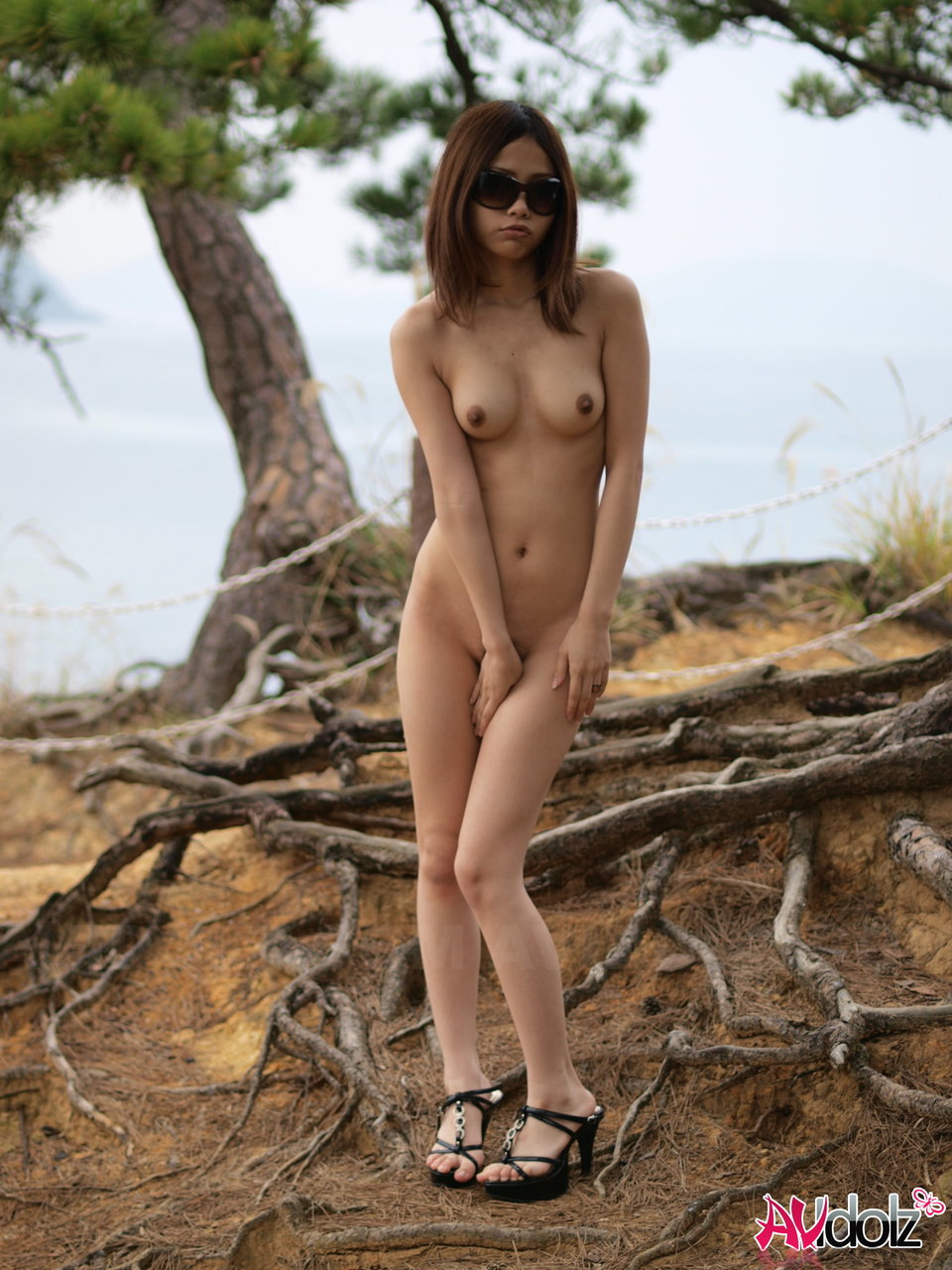Adult gallery Asian anti prostate cancer foods